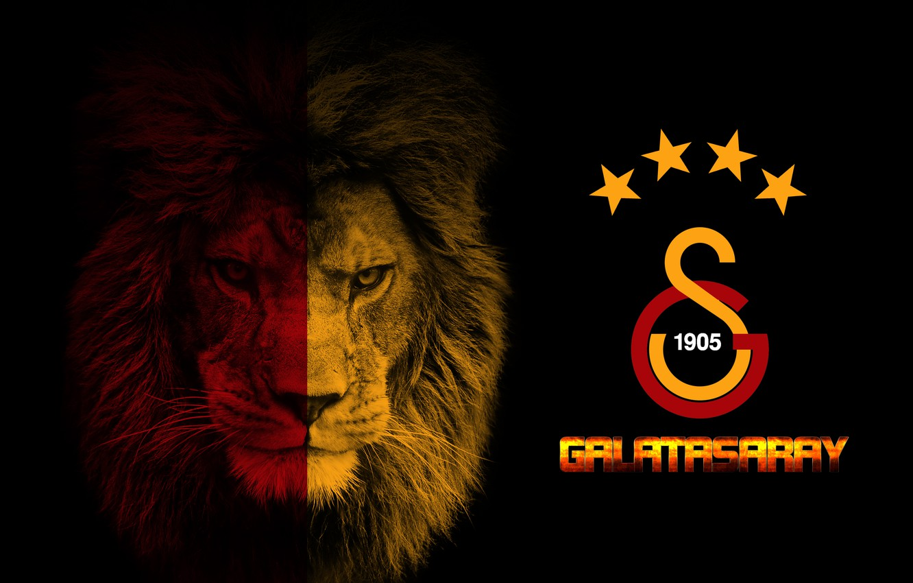 Image result for galatasaray logo